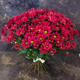 лучшей подруге красивые цветы